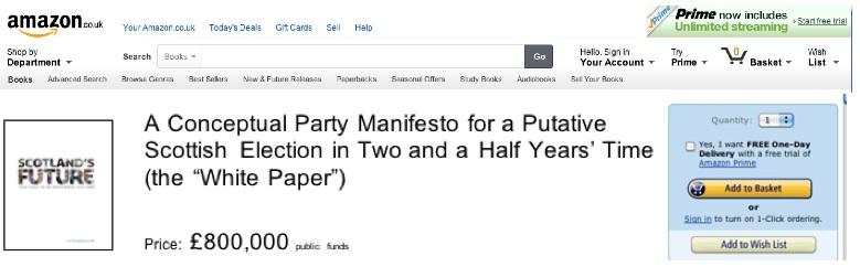 amazon conceptual manifesto